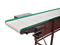 Un dettaglio di un nastro trasportatore in acciaio inox, con catena modulare intralox di colore bianco